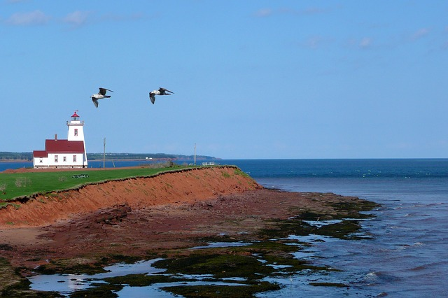 Atlantic Provincial Nominee