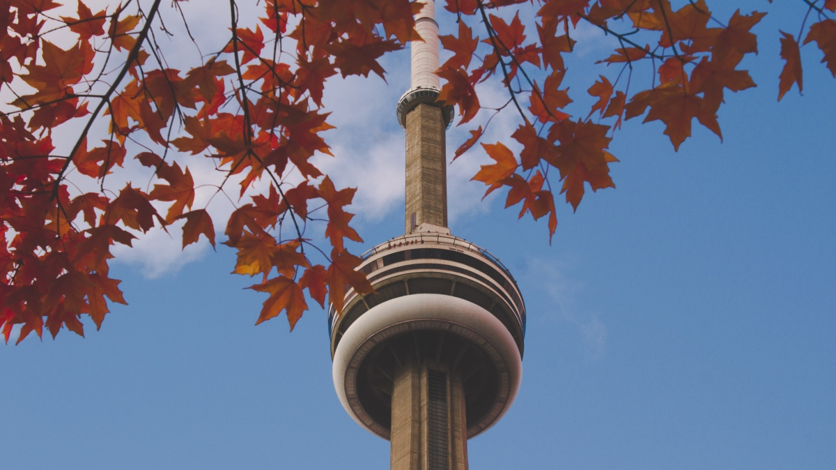 Ontario's Express Entry HCP Stream: Now Accepting Applications